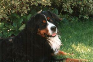 Tina mit 7 Jahren